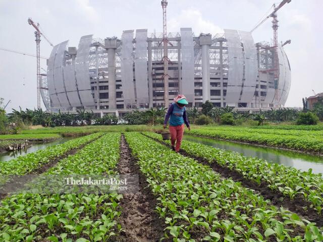 Petani Sayur