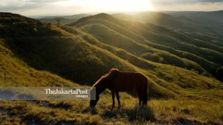 Wairinding Hills