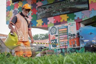 Vegetable center (Trasa Balong)