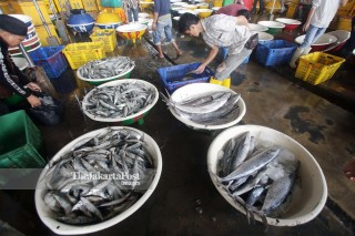Bad Weather Fish Supply Low