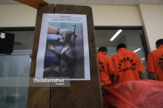 Ilegal animal trafficking