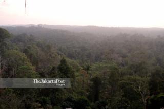 Soeharto hills