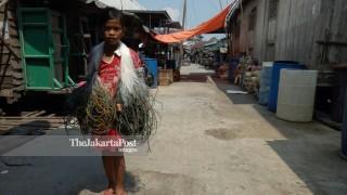 Kampung Nelayan di Taman Nasional Sembilan