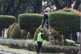 City park maintainance